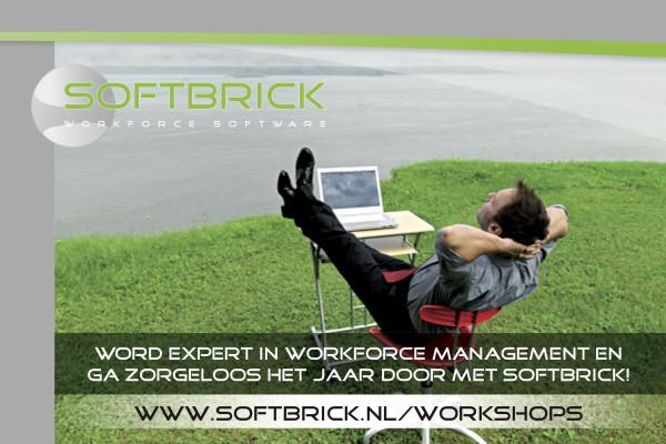 Softbrick